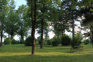 Udbina park